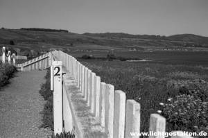 California Sausalito Westcoast USA Fence